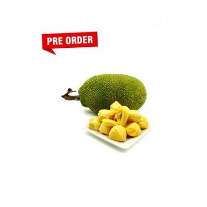 Madam Sun - Jackfruit